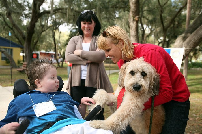 child in wheelchair engaging adult with therapy dog